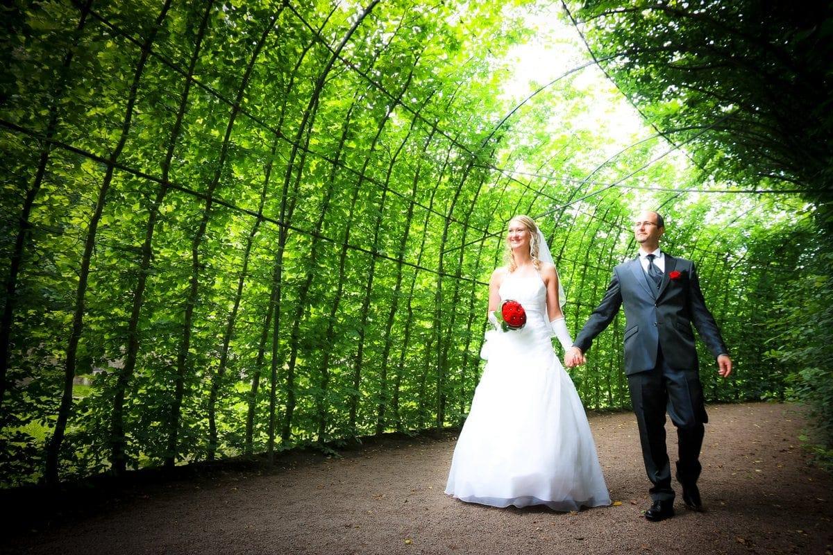 Andreas Gbler Fotograf in Pirna  Hochzeiten  Feiern