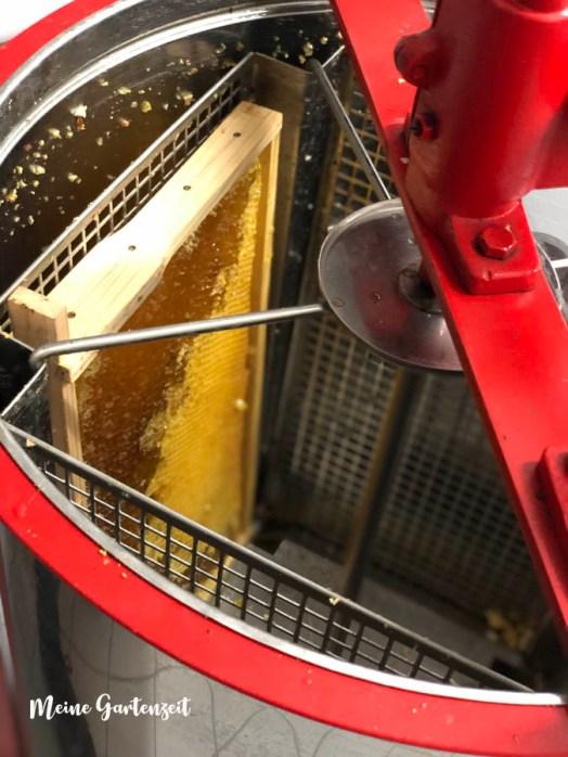 Honig schleudern