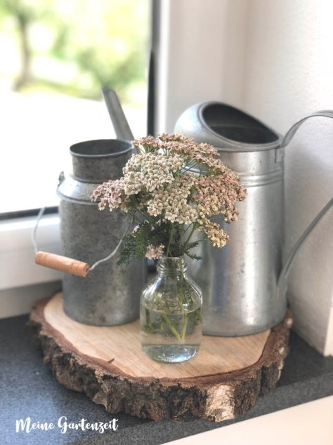 Schafgarbe für die Vase