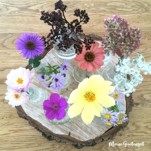 Blumensammlung a la Meike Winnemuth