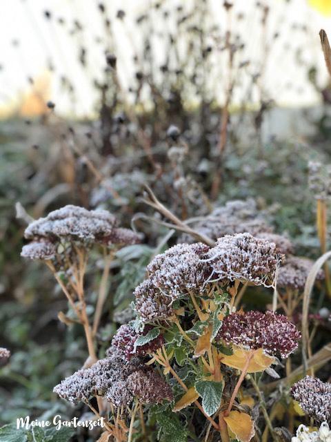 November-Garten