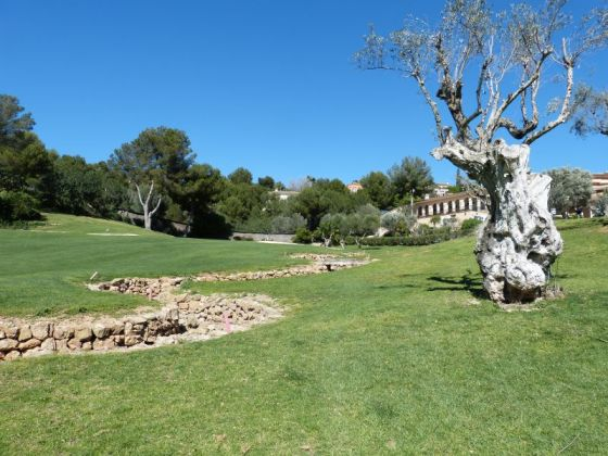Mallorca - GC Bendinat - Abschlag 1