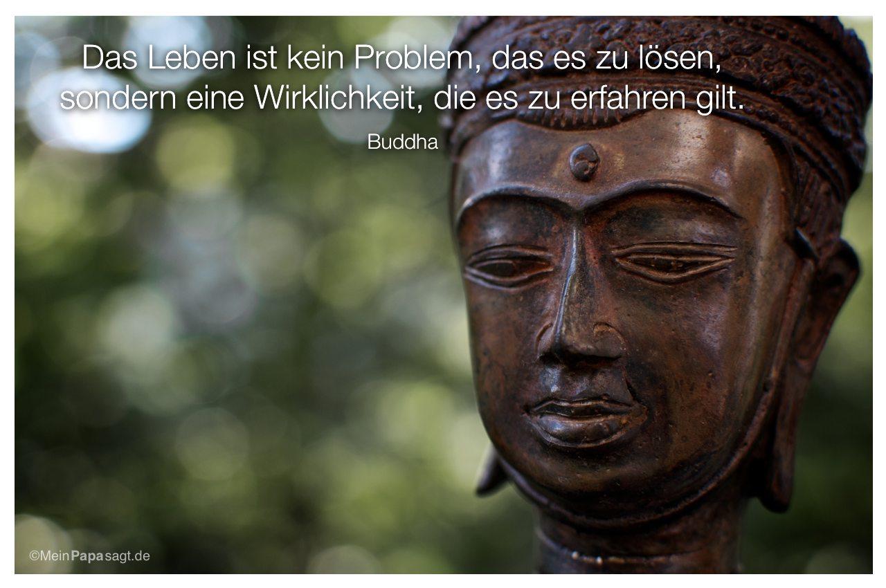 buddha sprche ~ jan.cukjati design