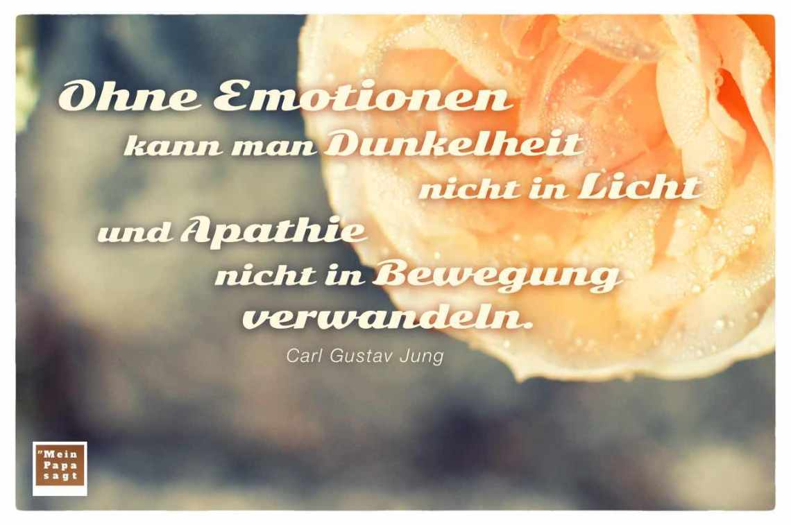 Ohne Emotionen Kann Man Dunkelheit Nicht In Licht Und