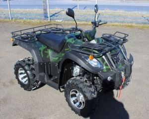 ATV Freelander 250 ccm