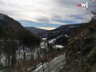 die-letzten-winterfreuden-meinwiesental-todtnau-wasserfall-galerie-05