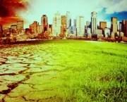 Tudo Sobre Meio Ambiente (12)