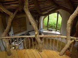 Casas Ecologicamente Corretas  Natureza e Clima  Meio Ambiente  Cultura Mix