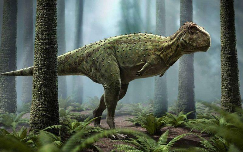 Pycnonemossauro, primo brasileiro do Tiranossauro Rex
