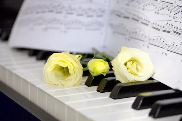 音楽専門コース