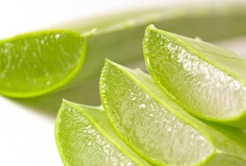Aloe vera para blanquear tus dientes