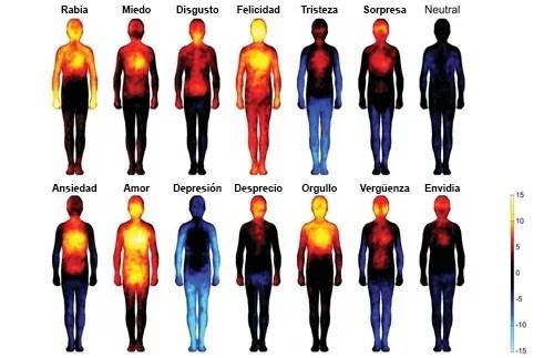 Los efectos de las emociones y pensamientos negativos en nuestro cuerpo