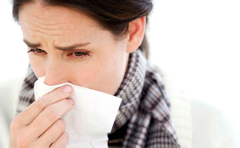 virus que causan enfermedades respiratorias