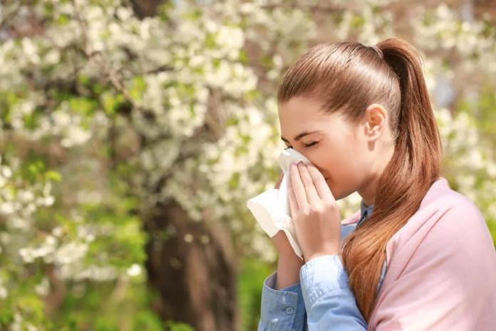 3 preparados medicinales que te ayudan a combatir las alergias