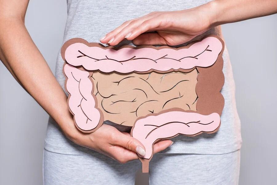 ¿Qué hacer para cuidar tu salud intestinal?