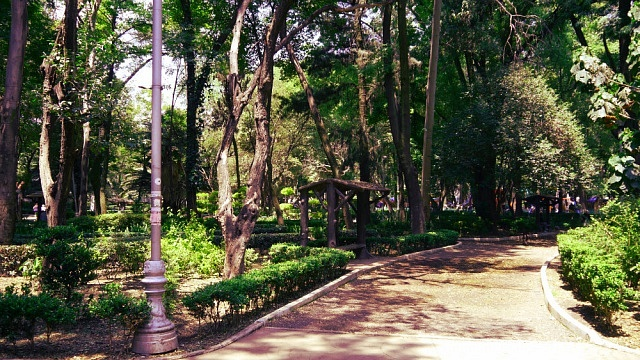 Stay in Condesa - Mexico City