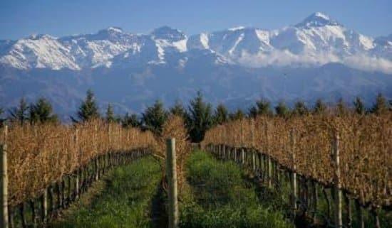Chacras de Coria - Where to stay in Mendoza, Argentina