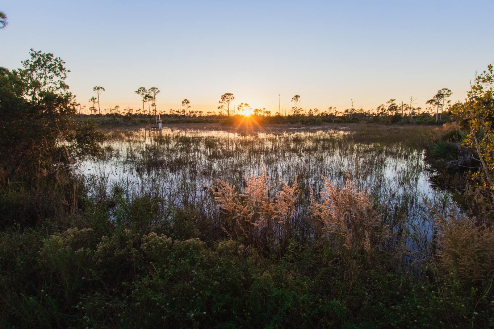 Las mejores zonas donde alojarse en Fort Pierce, FL