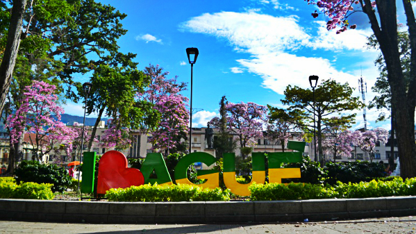 Where to stay in Ibagué - City Center