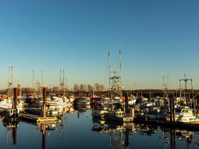 Las mejores zonas donde alojarse en Richmond, Canadá