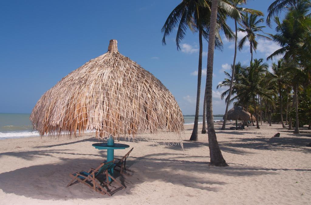 Dónde hospedarse en Palomino, Colombia - Cerca de la Playa