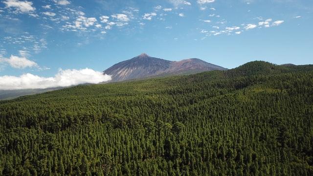 Dónde alojarse en el interior de la isla de Tenerife - Cerca del Parque Nacional del Teide