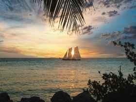 Las mejores zonas donde alojarse en Key West, Florida