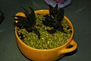 """""""Espacio Verde"""". Manualidades y Plantas Decorativas. Ana María Tapia, Cel: +56945324483. Mail: anamariatapia25@gmail.com"""