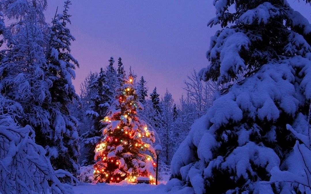 I regali di Natale in largo anticipo sono una roba intelligente