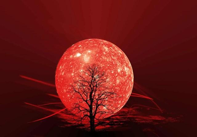 ciclo-lunare