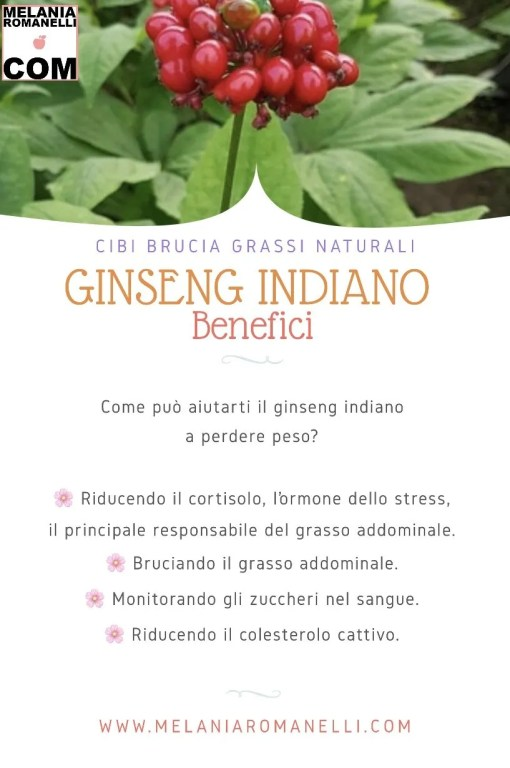 benefici-del-ginseng-indiano