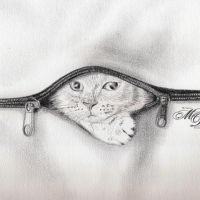 "Dessin - ""Little Cat"" !"