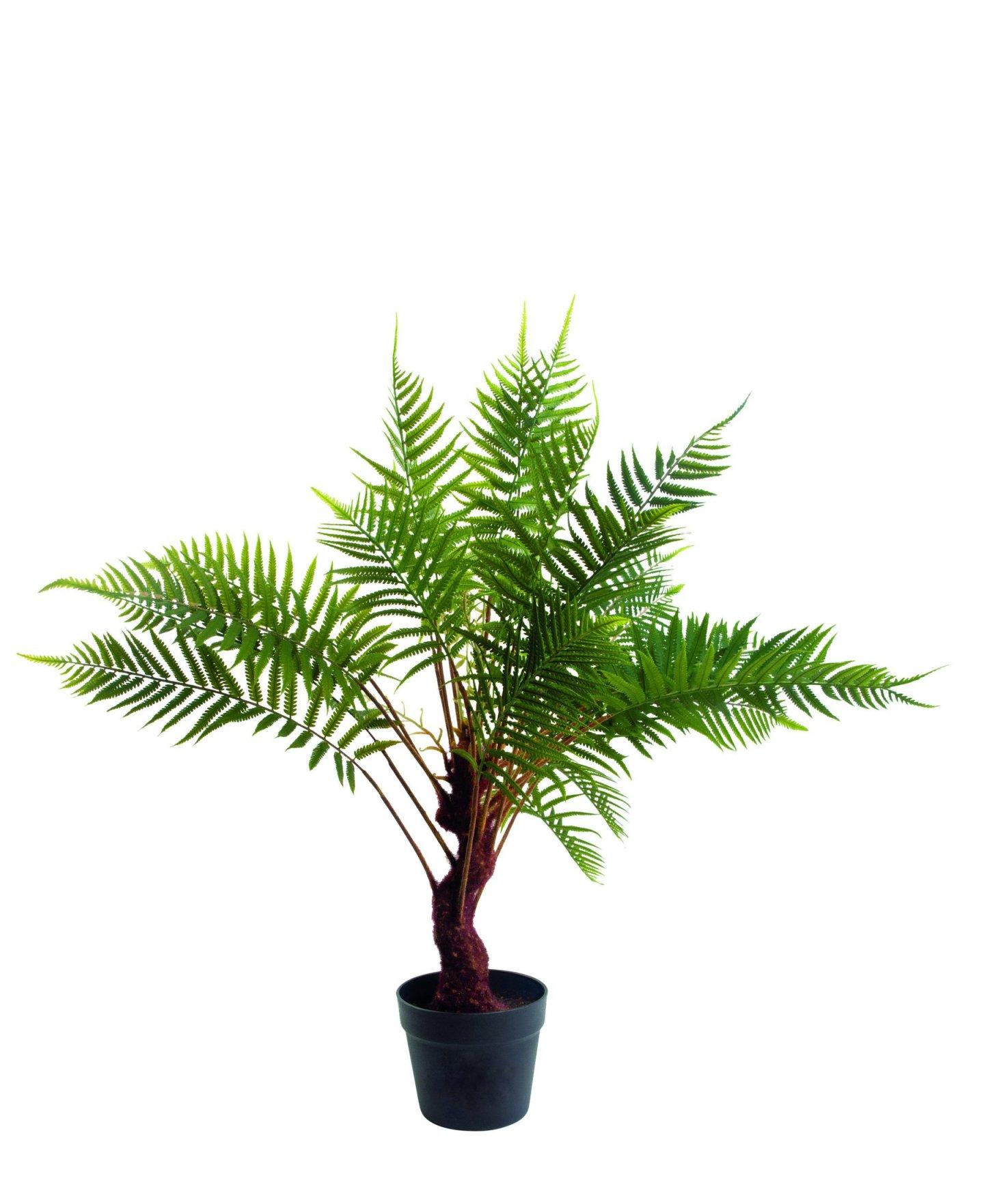 Artificial Fern Plant - Dowsing & Reynolds