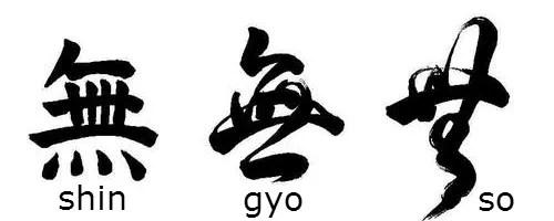Shin gyo so