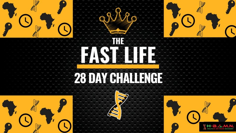 the_fast_life_coaching_slides_1024x1024-2x