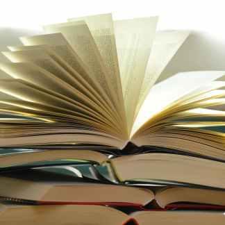 Melanin Rich Wellness E-Books