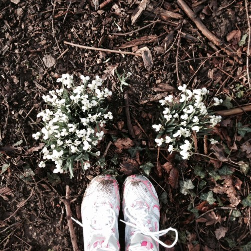 Snowdrops and shoes