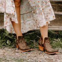 Ariat Dixon western booties