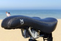 Brompton saddle with beach background - @daynaa2000