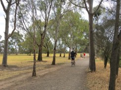 Riding the gravel paths through Yarra Bend Park