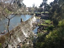 Weir wall from Gaffney St at Coburg Lake