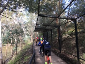 Part of Yarra Trail that was actually concreted instead of just mud - #MelburnRoobaix #Melbourne #Brompton Club