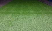 A-Grade-Synthetic-Grass1-600x360