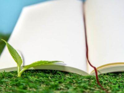 茶道から学ぶ持続可能な社会  ~お茶が教えてくれる4つのこと~