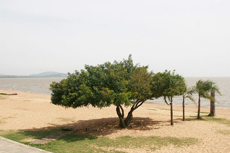 praia de Ipanema com o City tour de Porto Alegre com a Linha Turismo