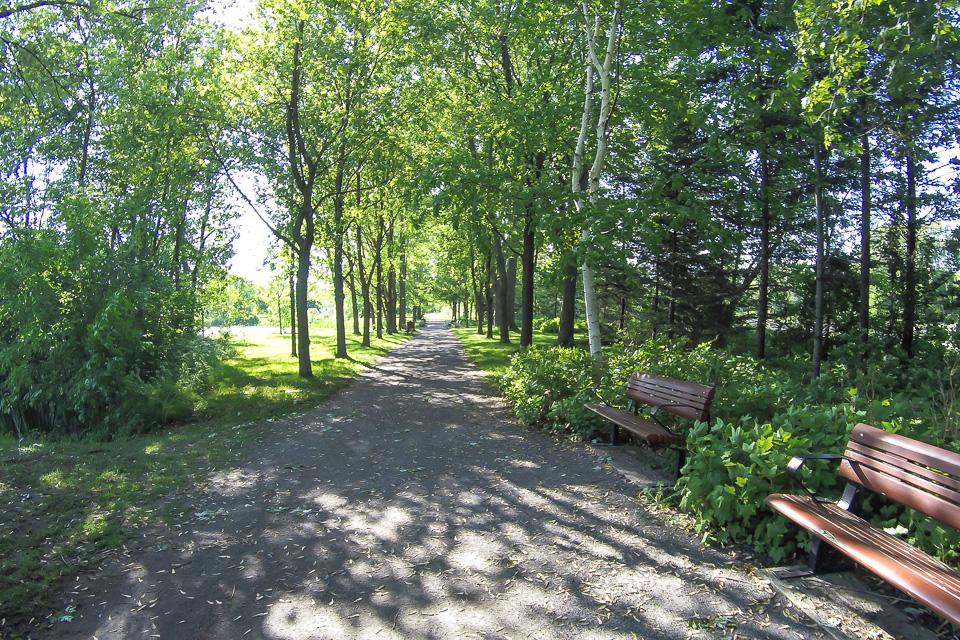Areá arborizada no Jardim Botânico de Montreal, Canadá