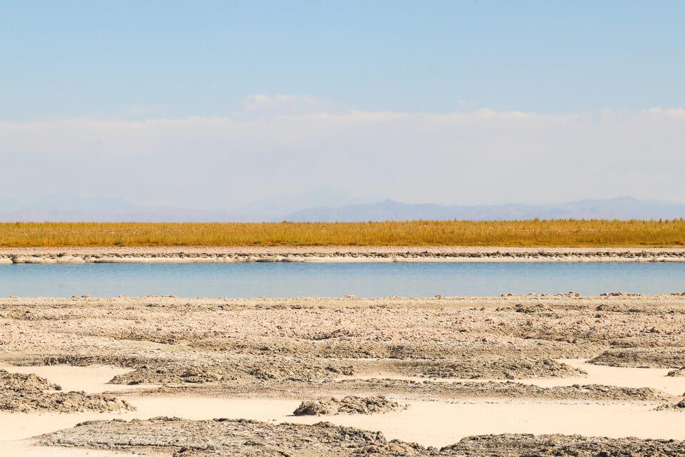 Quanto custa entrada Laguna Cejar