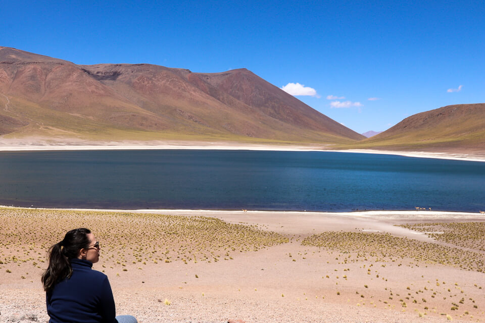 O que fazer na Laguna Meniques das Lagunas Altiplânicas do deserto do Atacama