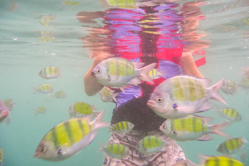 Koh Phi Phi, Tailândia