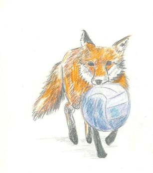 Fox and ball
